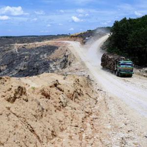 Logging operation in Sumatra.